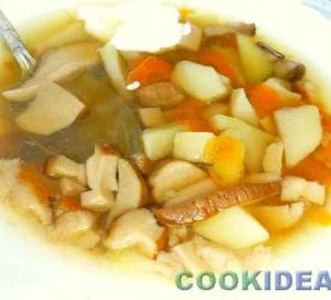 Суп из Белых Грибов королевский
